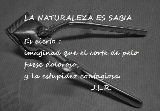 La naturaleza...