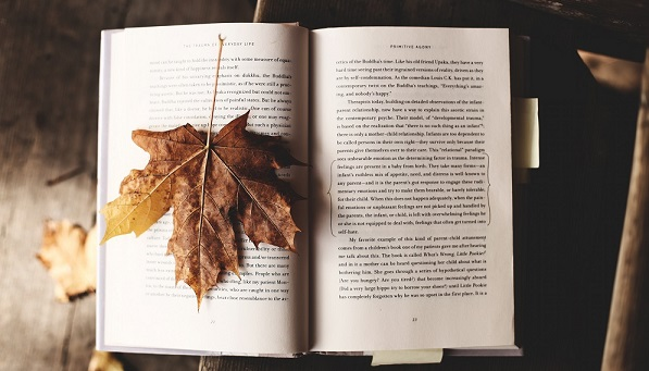 mejores-libros-leer-otoño