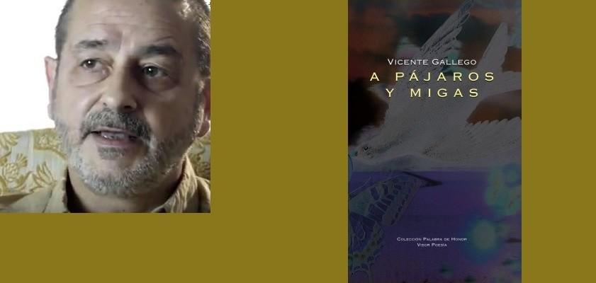 vicente-gallego